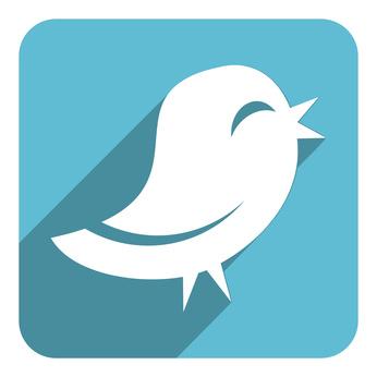 bird representing twitter
